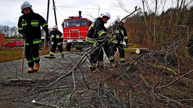 Strażacy interweniowali w związku z silnym wiatrem, który dodatkowo utrudniał akcje gaśnicze – ZDJĘCIA!