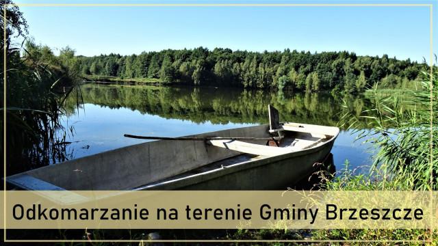 Trwa akcja odkomarzania na terenie Gminy Brzeszcze - InfoBrzeszcze.pl