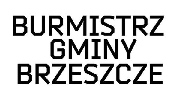 Trzech kandydatów do fotelu Burmistrza? - InfoBrzeszcze.pl