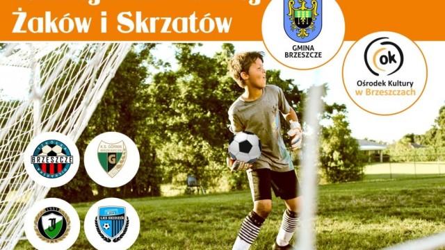 Turniej Piłki Nożnej Żaków i Skrzatów podczas Święta Gminy - InfoBrzeszcze.pl