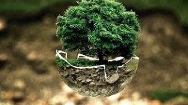 Ulgi w zakresie opłat środowiskowych