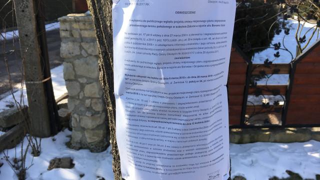 ZABORZE. Urzędnicy traktują drzewa jak tablice informacyjne...