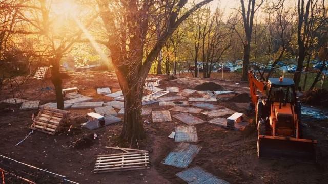 Zasadź żonkile w kieszonkowym Parku Pamięci