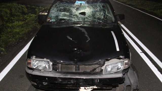 ZATOR. W wypadku drogowym zginęła 70-letnia piesza